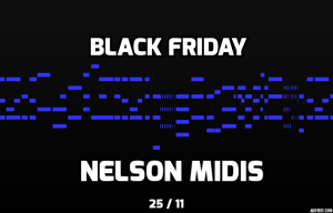 black-friday-nelson-midis-azul